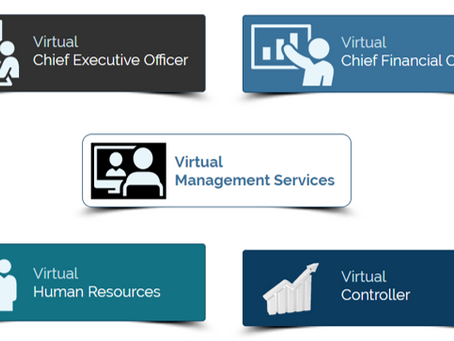 A Virtual Executive Improves Growth & Profitability at a Sustainable Price