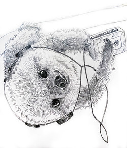 Walkman Sloth