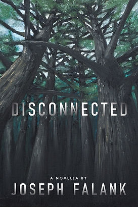 Disconnected - 600x900 - 75dpi.jpg