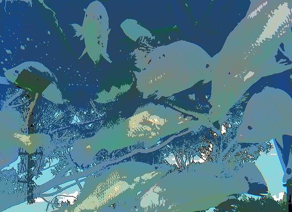Urban Fish - 2234
