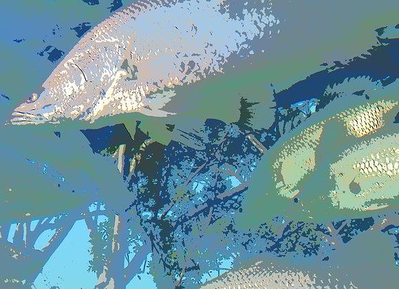 Urban Fish - 2241
