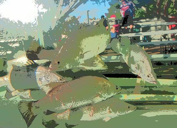 Urban Fish - 2182