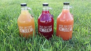Wild Culture Kombucha Iowa City Flavor Batches
