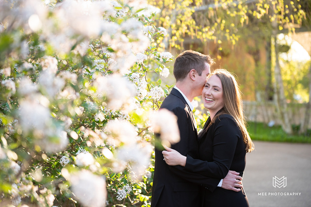 Spring engagement session with flowering trees at the Penn State arboretum