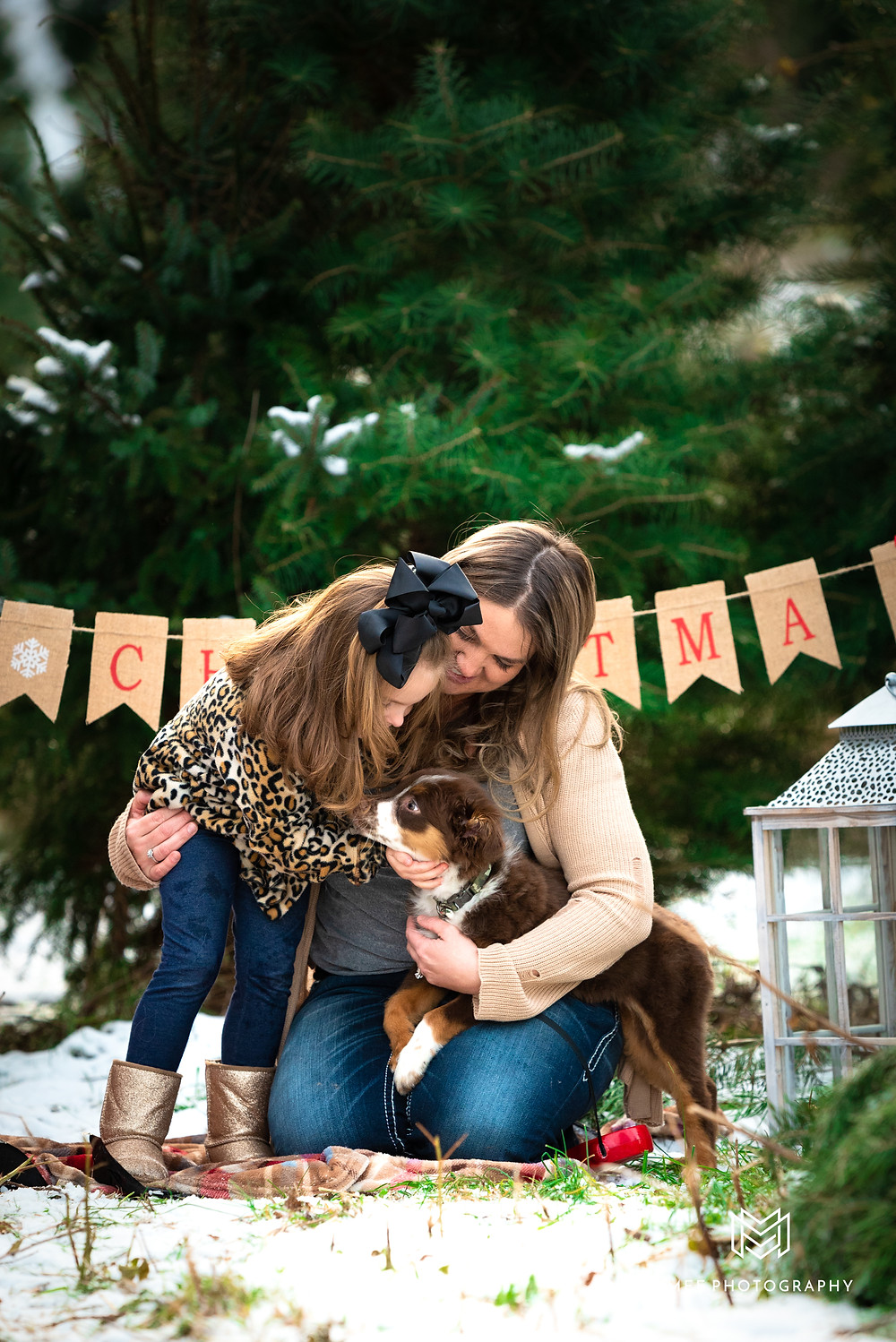 Christmas card photo session at a Christmas tree farm in East Liverpool, OH. Mother and daughter cuddling new Australian shepherd puppy.
