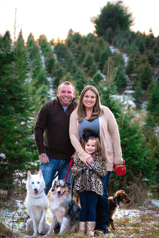 Christmas tree farm family photos with dogs at Windy Hill Tree Farm