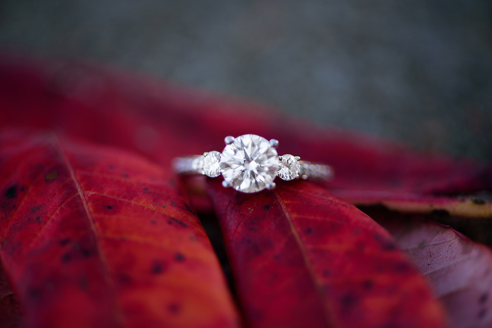 A picture of the engagement ring on a red fall leaf.
