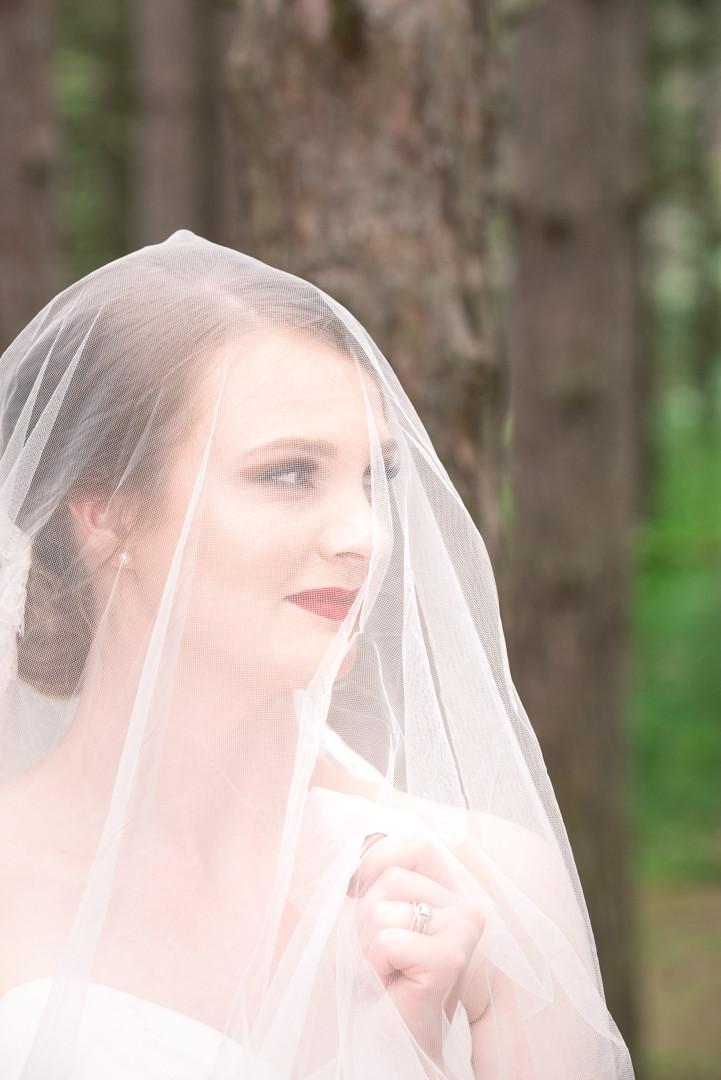 Bride posing under veil