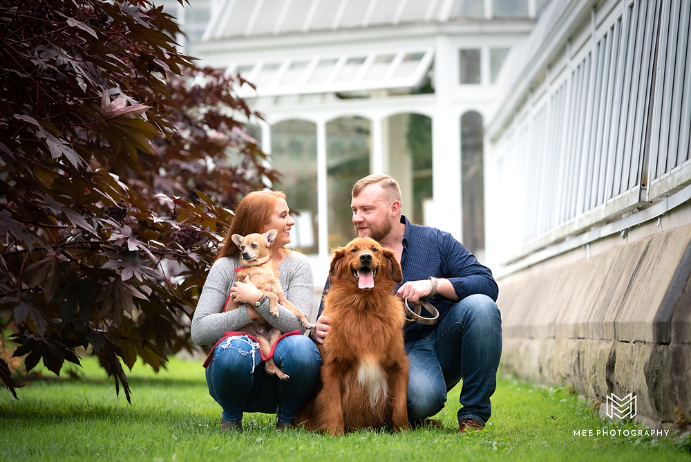 Puppies and engagement photos at Phipps Conservatory in Pittsburgh