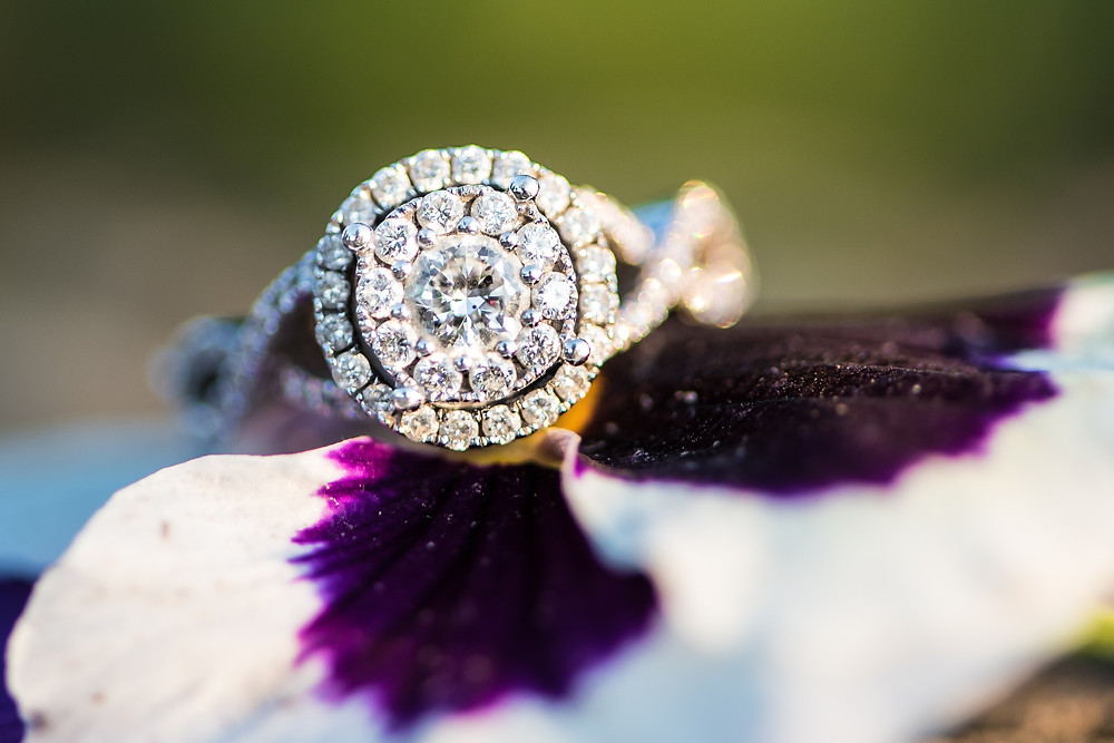 A ring shot of a gorgeous silver engagement ring with a double halo. Ring is placed on a purple and white flower.