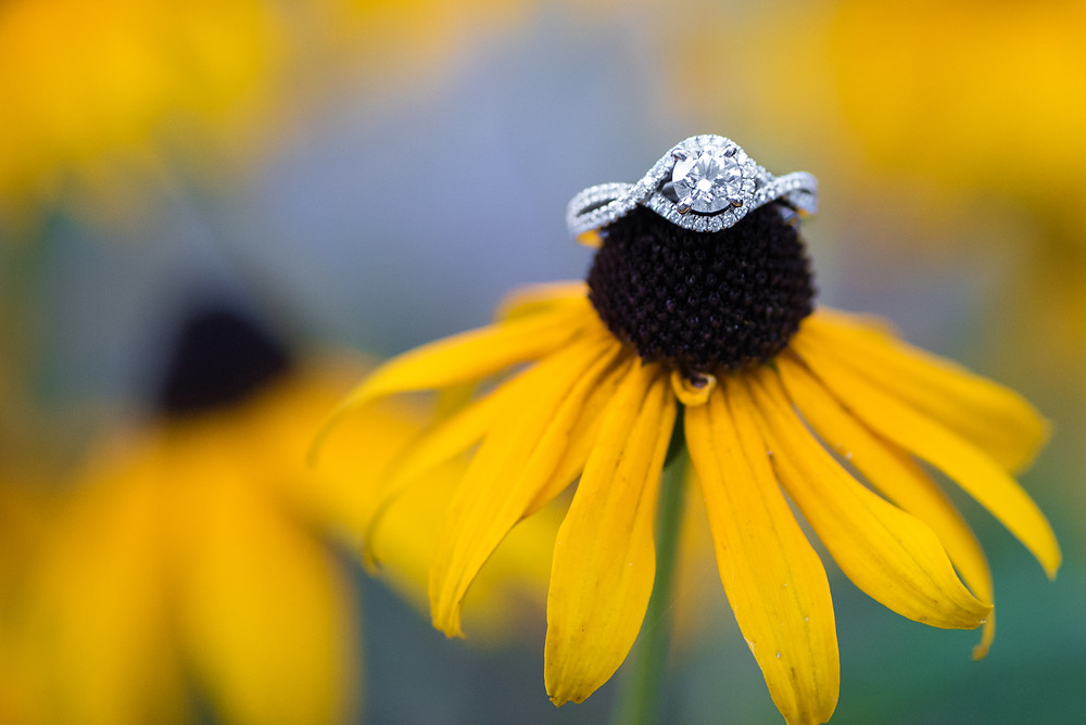A detail shot of a halo diamond engagement ring on a sunflower.