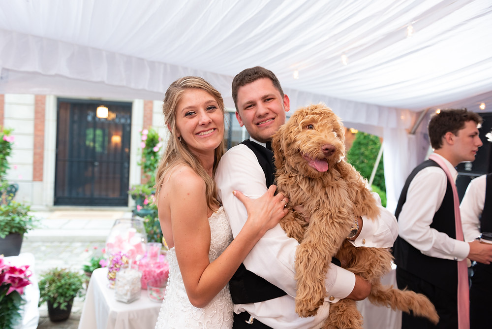 Bride and groom dancing with their golden doodle at the elegant tented wedding reception