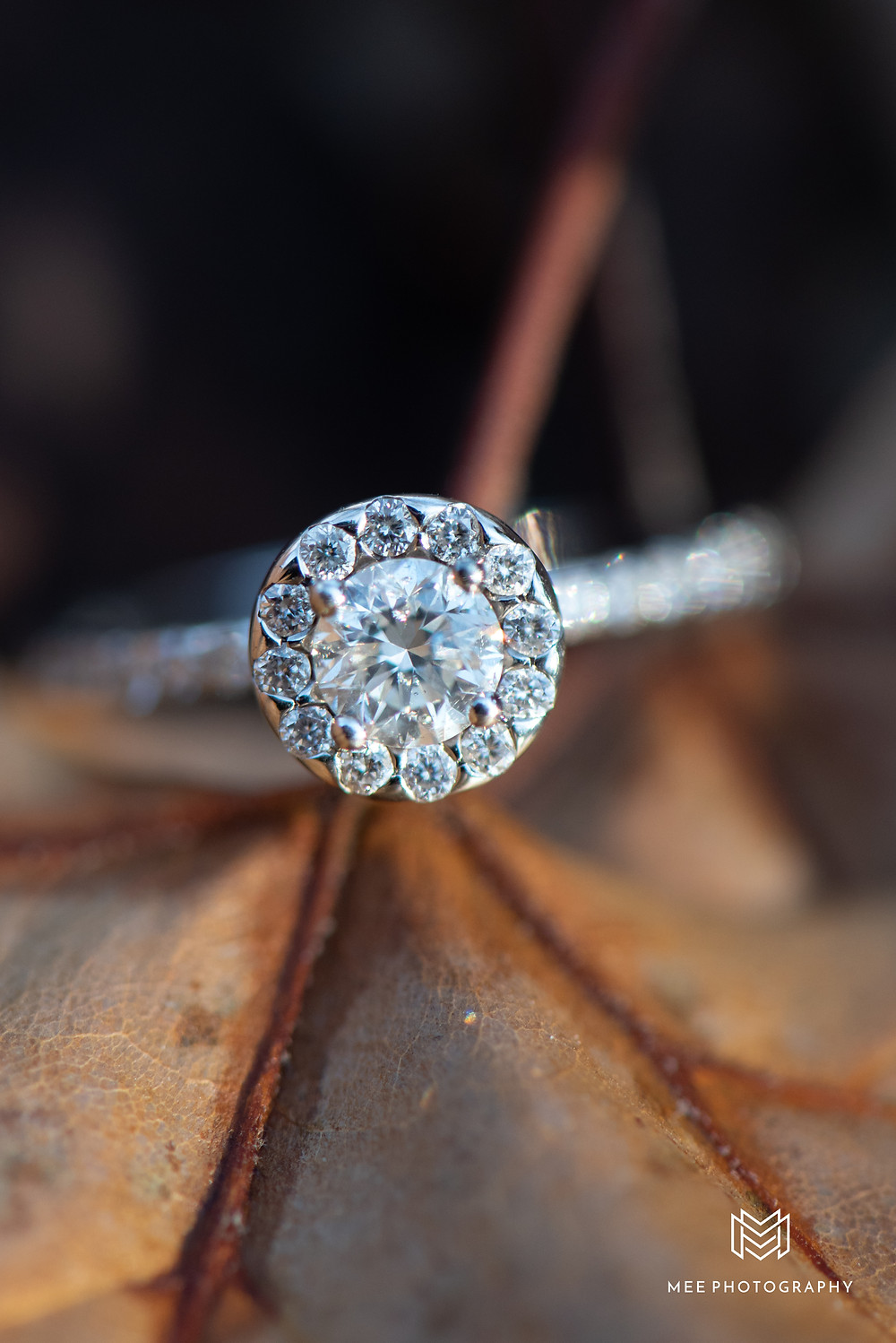 Macro shot of a round halo diamond engagement ring on a fall leaf