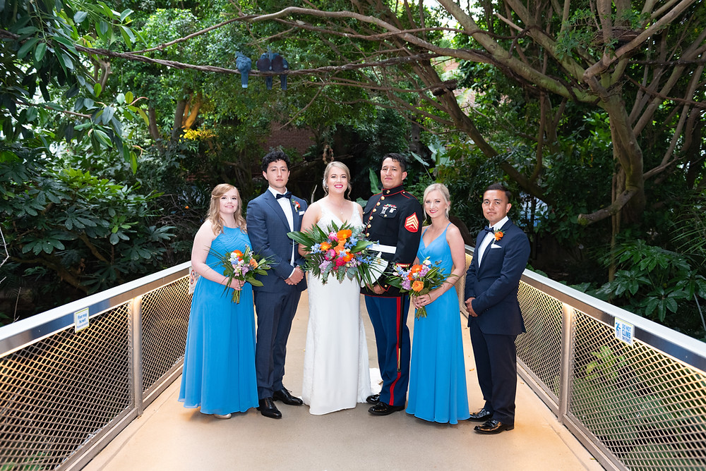 Bridal party photographs in the Rainforest room at The National Aviary in Pittsburgh