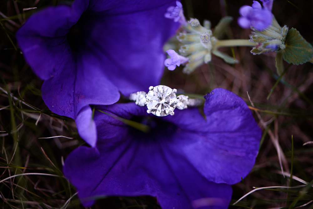 A halo engagement ring on a purple flower.