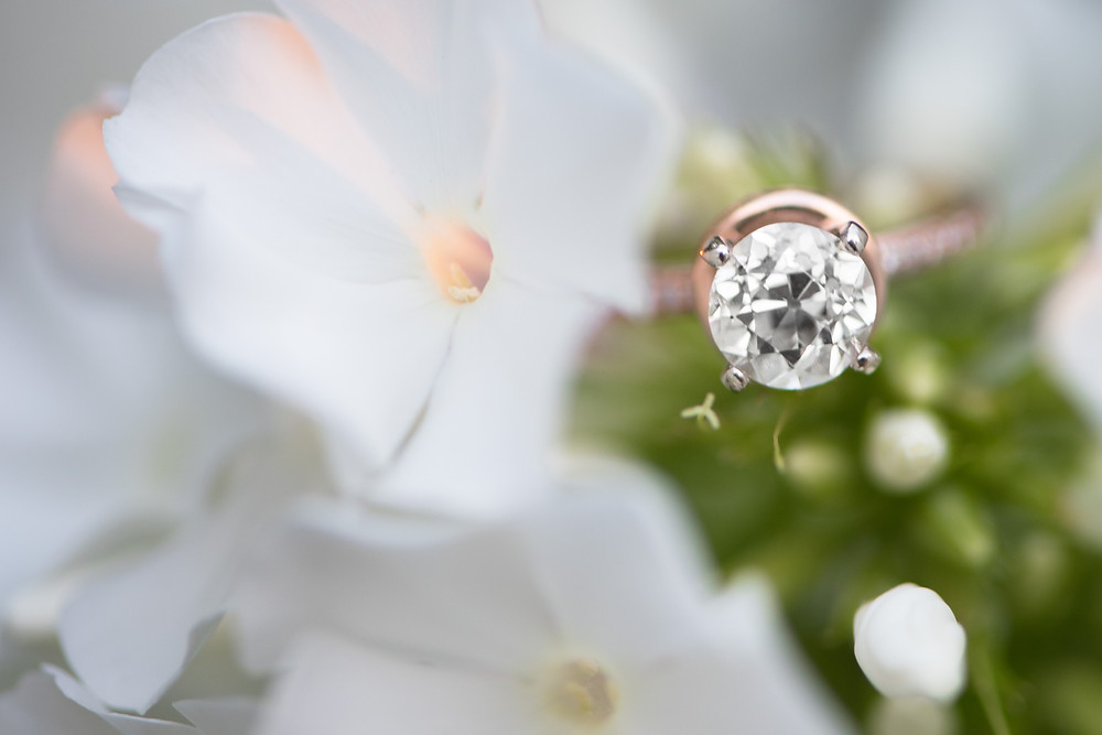 A detail shot of a brilliant round cut diamond engagement ring with a rose gold band