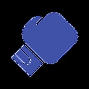 noun_boxing_2056897_4052a8.png