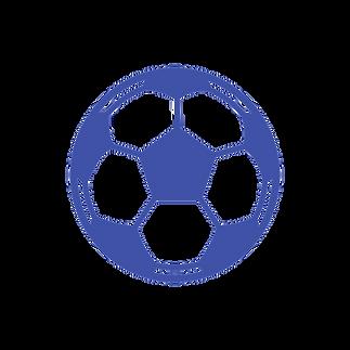 noun_Soccer Ball_338530_4052a8.png