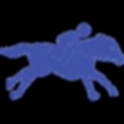 noun_horse racing_684437_4052a8.png