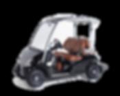 Star EV Cart