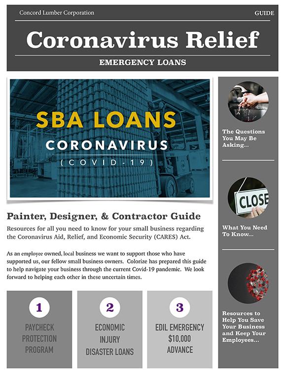 SBA Loans Guide