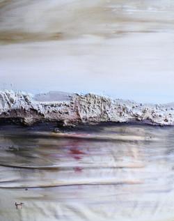 aureum_mare,2014-tècnica_mixta_damunt_tela-55-45cm.JPG