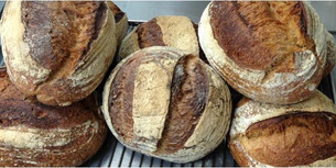 Campaillou sourdough HLB.jpg