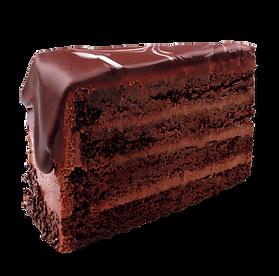 Chocolate Slice HLB.png