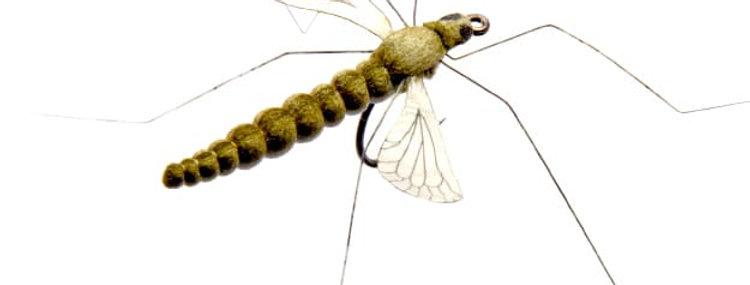 J:son Cranefly