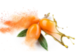 Sea Buckthorn oil powder and juice.png