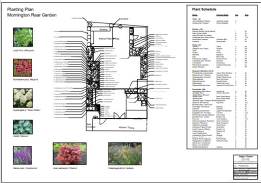 planting%20plan%20image_edited.jpg
