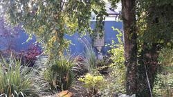 Meath Blue Garden