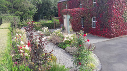 Traditional Front Garden, Meath
