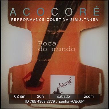 Acocore_02-01 .jpg