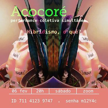 Acocore_06-02.jpg