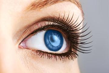 Eyelash2.jpg