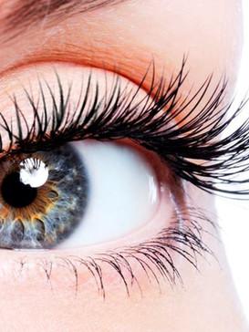 eyelashes1.jpg