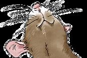 Pet Rat box illust.png