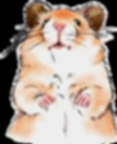cute hamsters.png