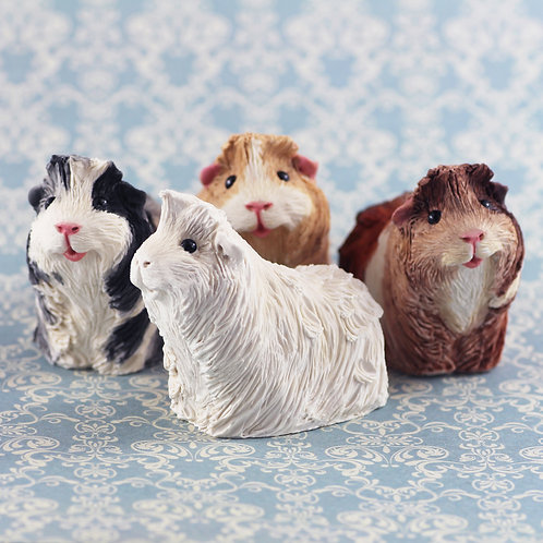 Paint your own guinea pig - Cadence