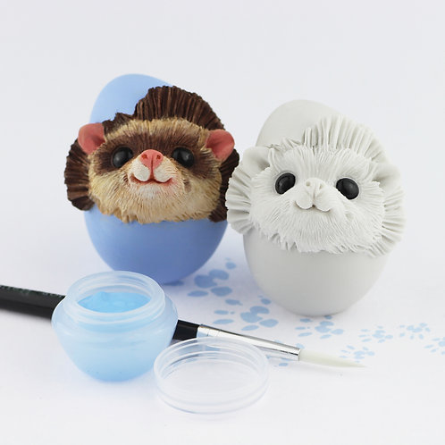 Pygmy Hedgehog - Paint your own