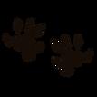 pyghog scribbles.png