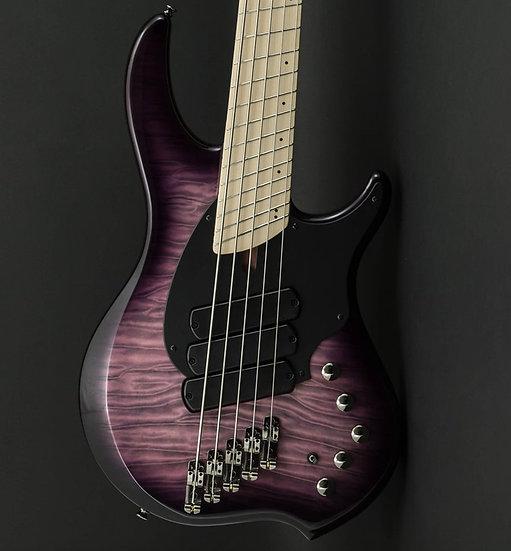 Dingwall Combustion 5 Ultra Violet w/Maple Fretboard