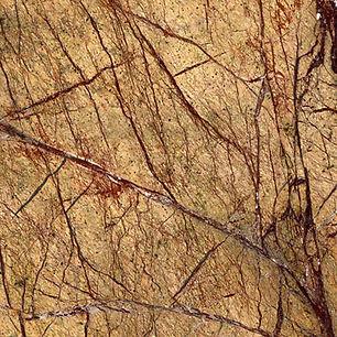 Rain-forest-Brown.jpg