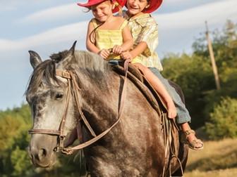 Приглашаем на конные прогулки!