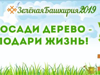 27 апреля в Нефтекамске пройдет республиканская акция «Зелёная Башкирия»!