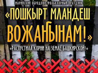 Праздничный концерт «Распустила корни на земле башкирской…»