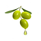 Olive Oil Droping-01.png