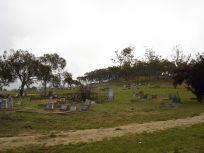 1294640188-cemetery.jpg