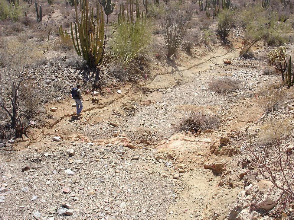 Project Miranda Zapata Exploration Ltd